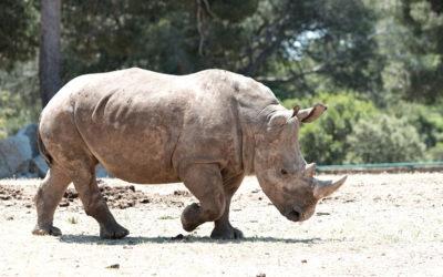 Visitez le Zoo de la Barben